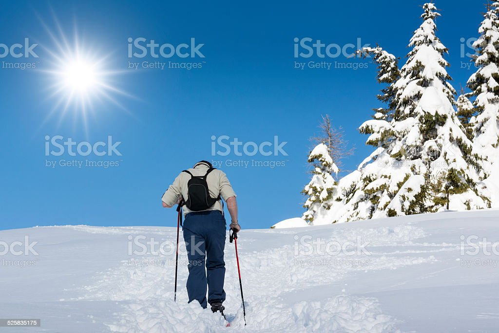 Hikers who is snowshoeing in a beautiful sunny day stock photo