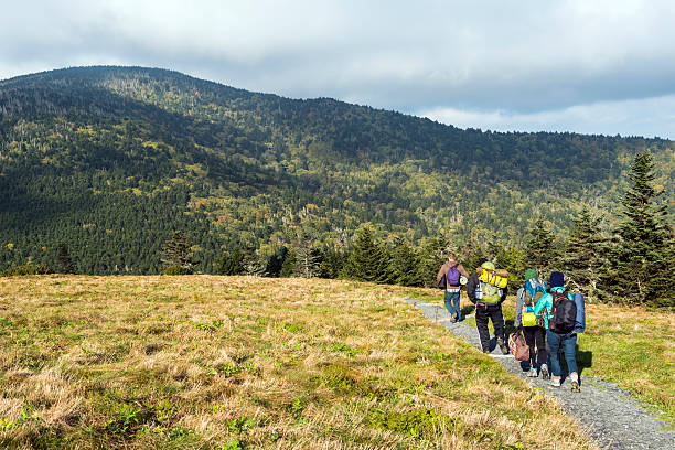 Hikers with backpacks on Appalachian Trail Hikers on Appalachian Trail at Roan Mountain appalachian trail stock pictures, royalty-free photos & images