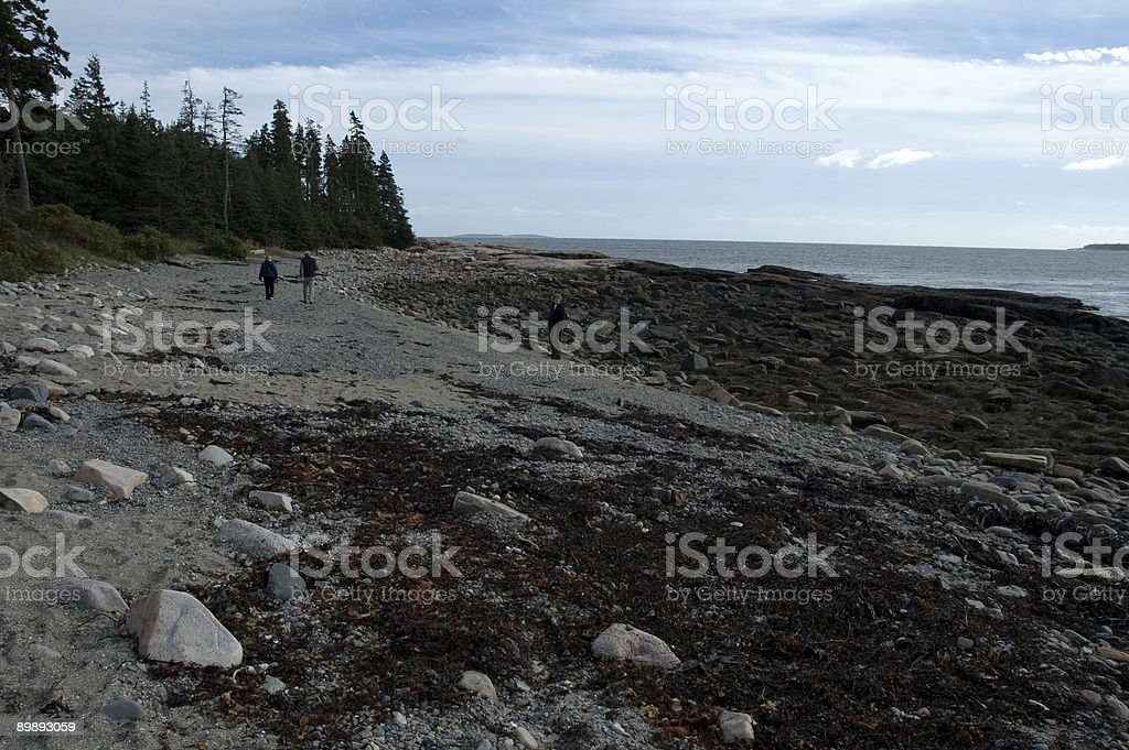 Hikers, Wonderland Trail royalty-free stock photo