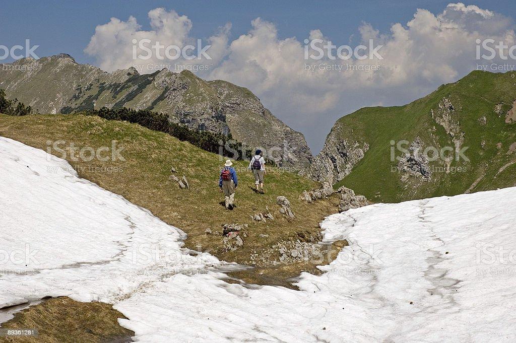 Wędrówki w obrębie pole śniegowe w Alpach zbiór zdjęć royalty-free