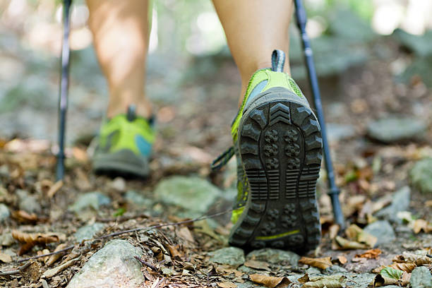 Hiking and walking foot in autumn forest trail Woman hiking and nordic walking in autumn forest. nordic walking stock pictures, royalty-free photos & images