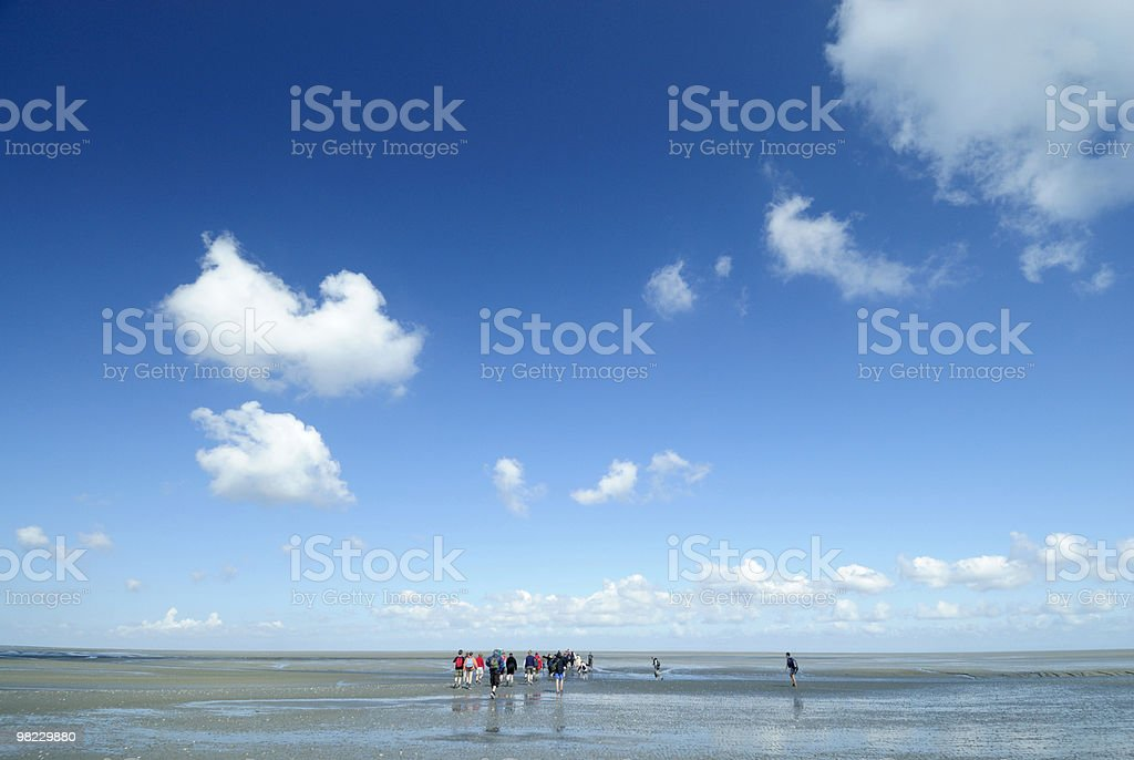 Hiking at low tide in the Netherlands royalty-free stock photo
