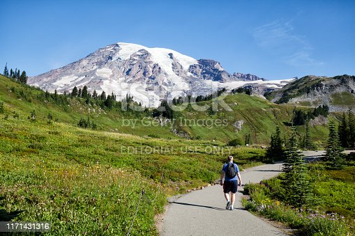 August 18, 2019 WA, USA: Man hiking at Mount Rainier NP at Paradise on a summer morning.