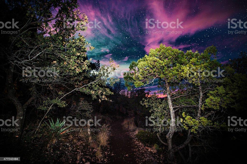 Hiking at night. Lost Mine Trail, Big Bend stock photo