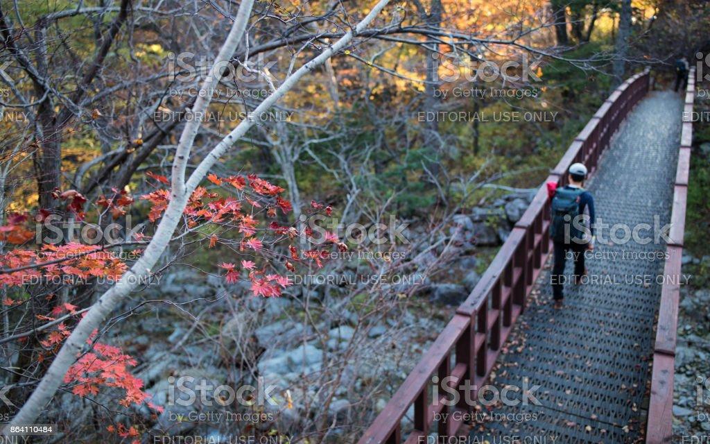 Hiking Autumn Mountain, 공룡능선 설악산 royalty-free stock photo