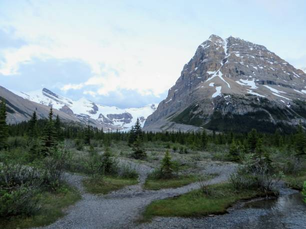 Hiking Berg Lake in Mount Robson Provincial Park, BC, Canada stock photo