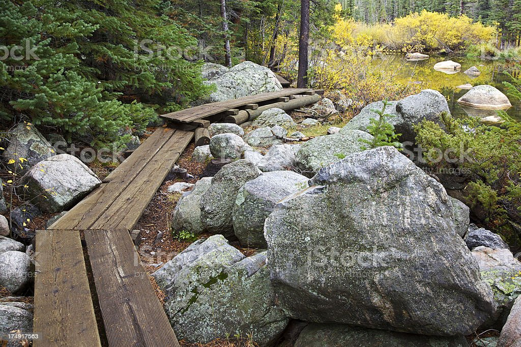 Hiking Boardwalk in the Rocky Mountains of Colorado stock photo
