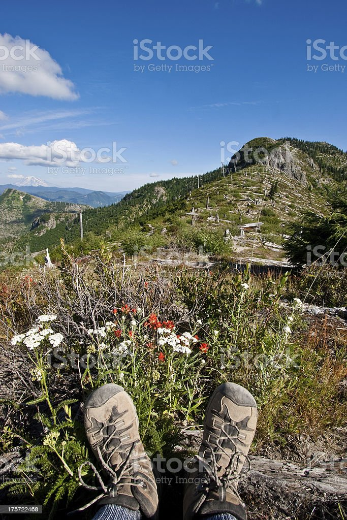 Hiking Boots and Wildflowers at Norway Pass royalty-free stock photo