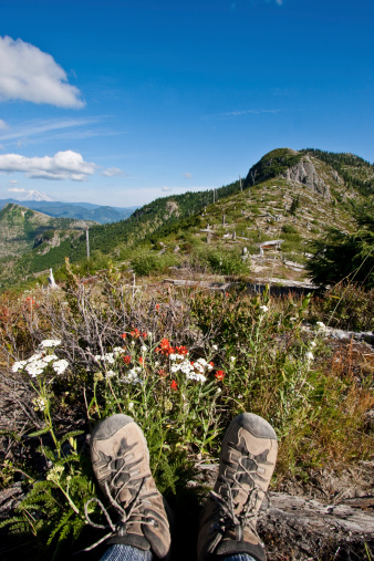 Hiking Boots And Wildflowers At Norway Pass Stock Photo - Download Image Now