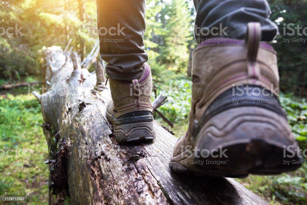 Hiking Boots Closeup Girl Tourist Steps On A Logn Stock