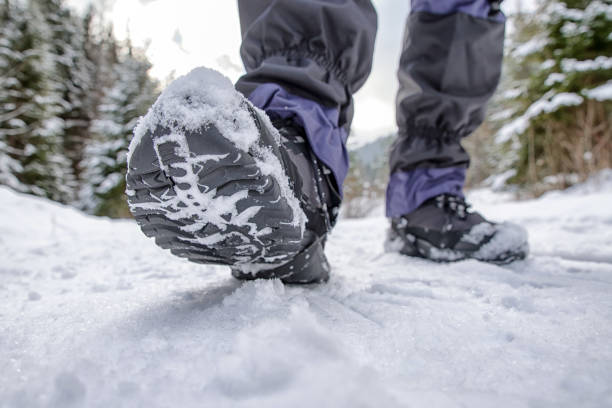 Hiking boots in snowy forest stock photo