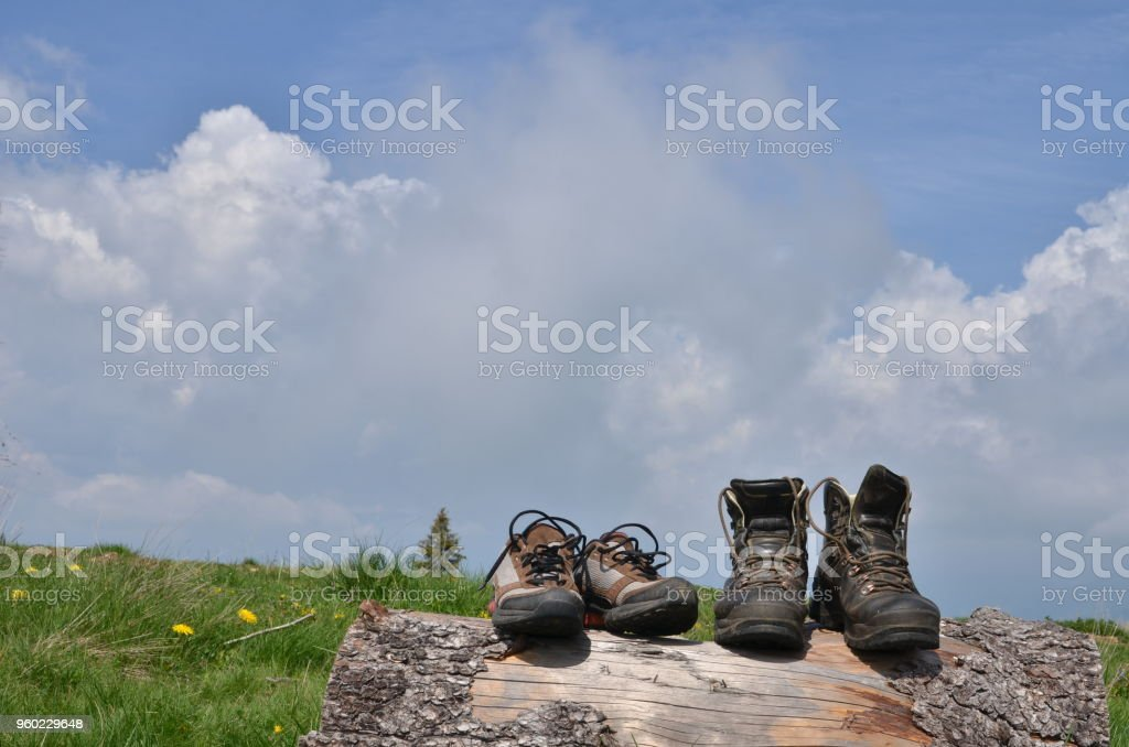 Hiking Boots Shoes Wood Log Stock Photo - Download Image Now