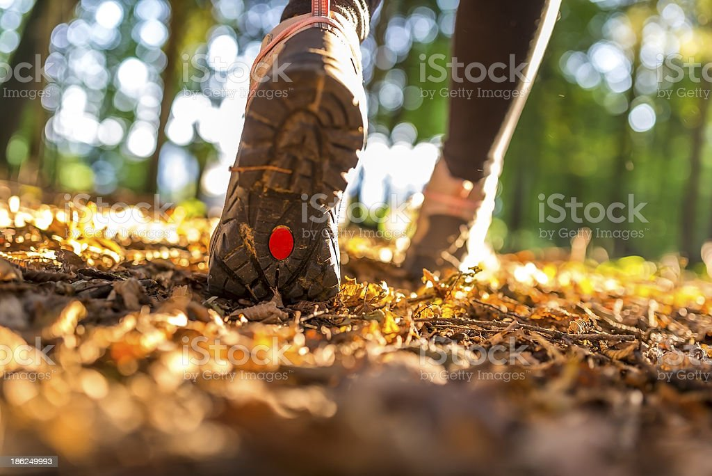 Hiking concept stock photo