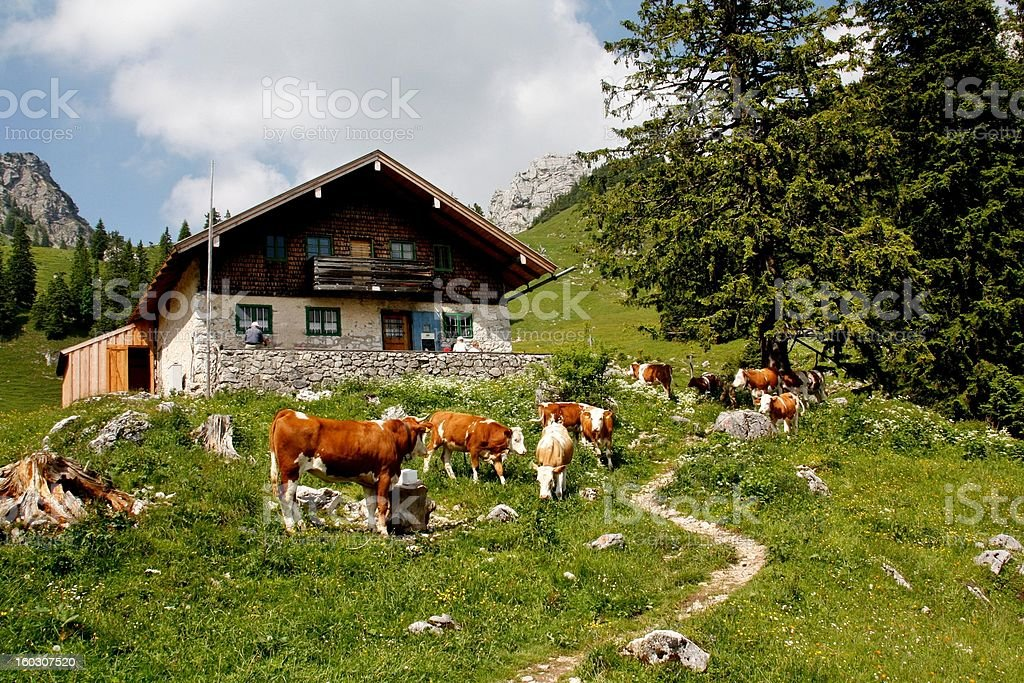Hiking-Hütte im Gebirge – Foto