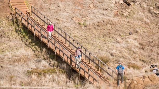 eine wandergruppe auf der insel madeira, portugal - andreas haas stock-fotos und bilder