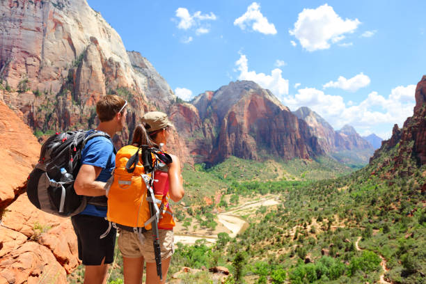 Hiking - hikers looking at view Zion National park Hiking - hikers looking at view in Zion National park. People living healthy active lifestyle dong hike in beautiful nature landscape to Observation Point near Angles Landing, Zion Canyon, Utah, USA. zion national park stock pictures, royalty-free photos & images