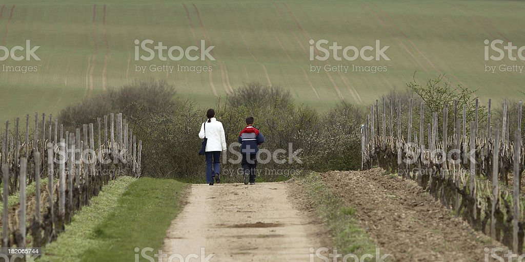 Hiking in a Winery stock photo