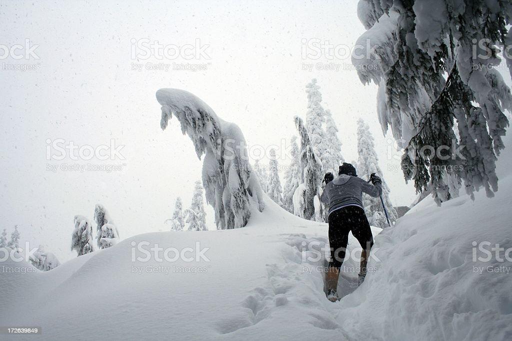 Wandern In ein Winter-Wunderland – Foto