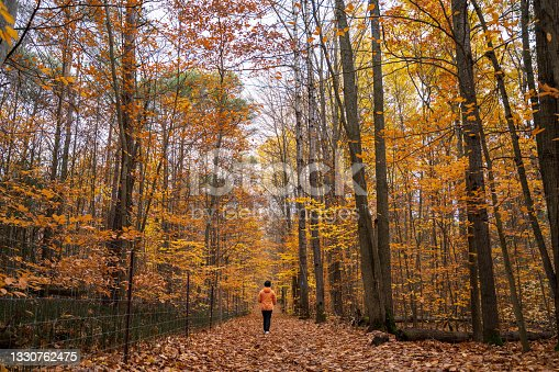istock Hiking in autumn forest 1330762475