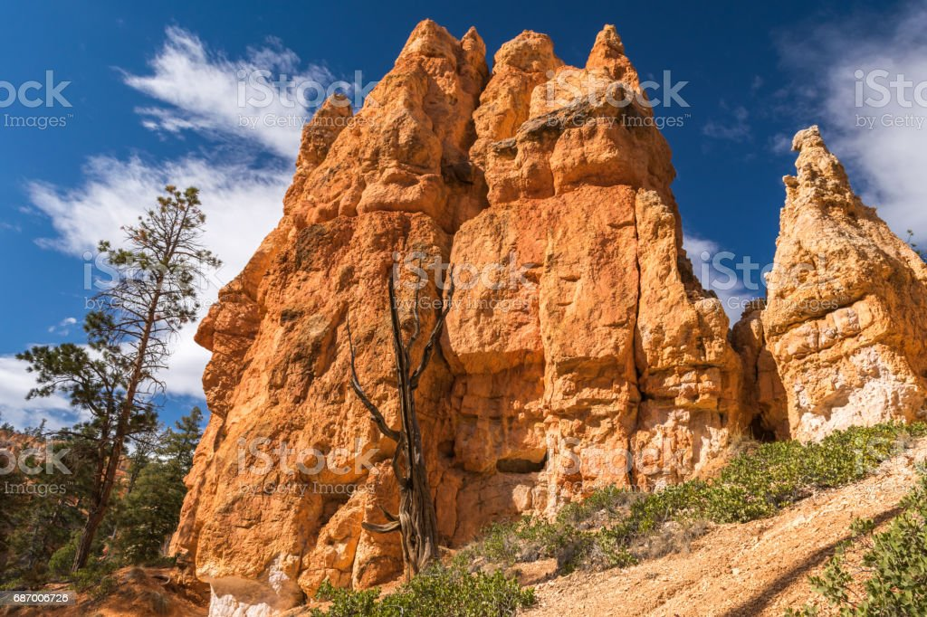 Hiking in Bryce Canyon, Rim trail-Sunset to Sunrise, Queens Garden and Peek-A-Boo Loop Trails, Bryce Canyon National Park, North America, USA Lizenzfreies stock-foto