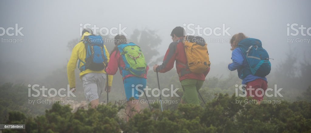 Hiking in forest stock photo