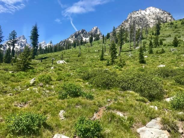 Hiking in Grand Teton National Park stock photo