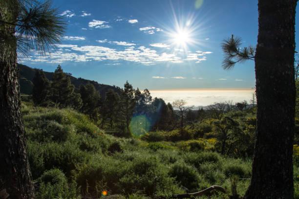 Hiking in idyllic nature of Gran Canaria, Spain - Stock Image stock photo