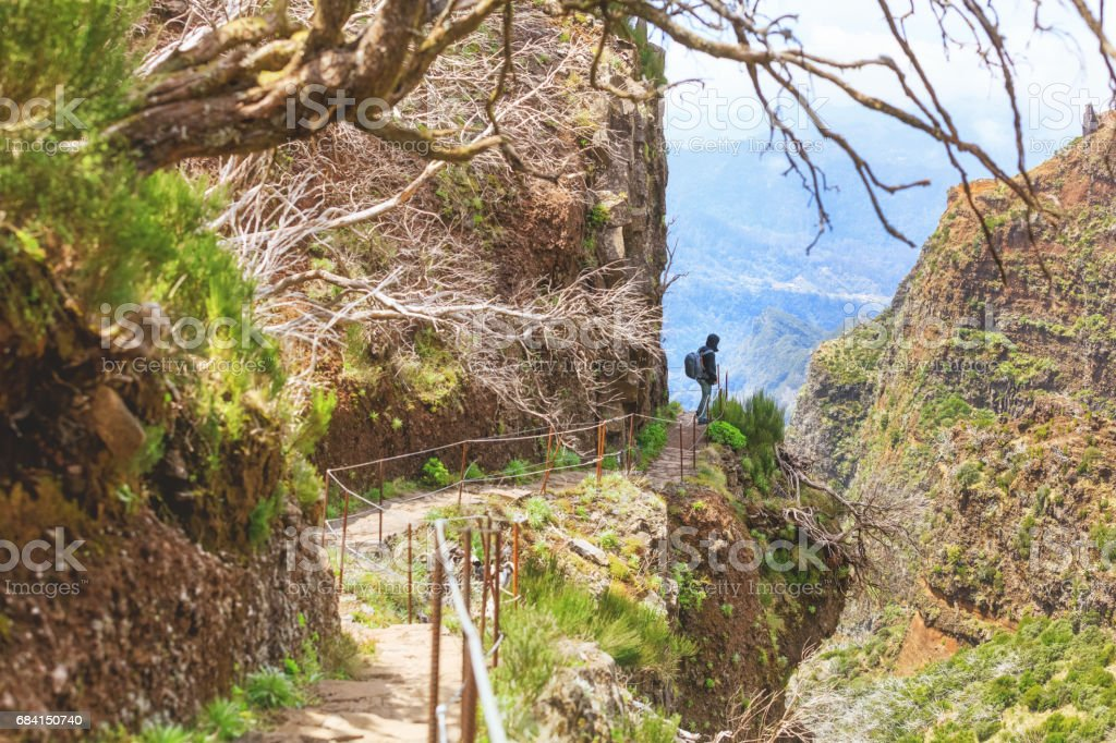 Hiking in Madeira royalty free stockfoto