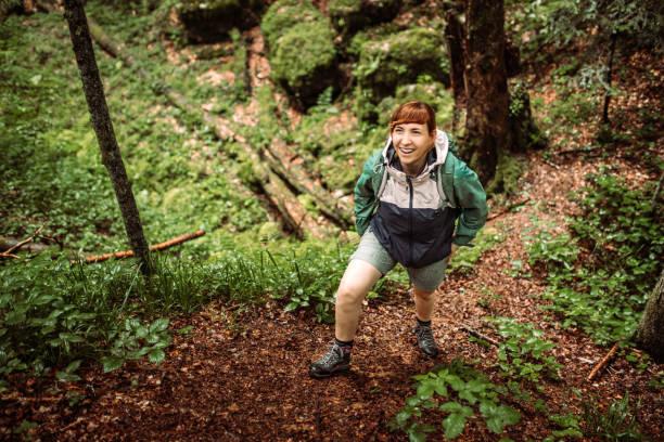 Wandern im alten Wald – Foto