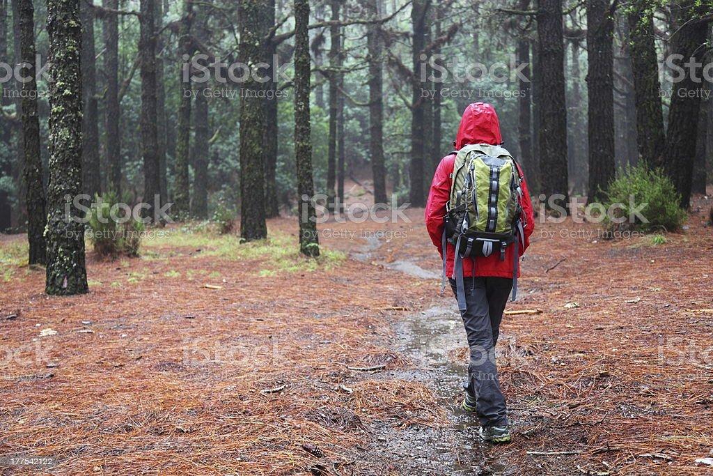 Hiking in rain stock photo