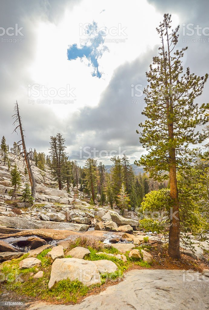 Hiking in Sequoia national park, California. stock photo