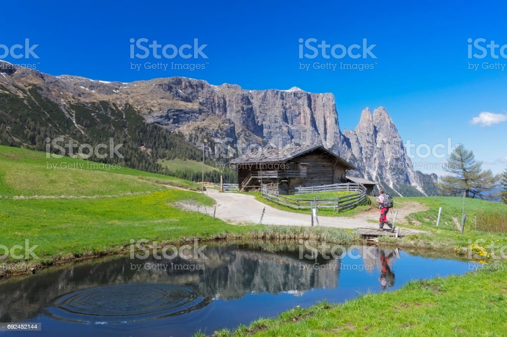 Hiking in the Alps, Alpe di Siusi - Mount Schlern in background stock photo