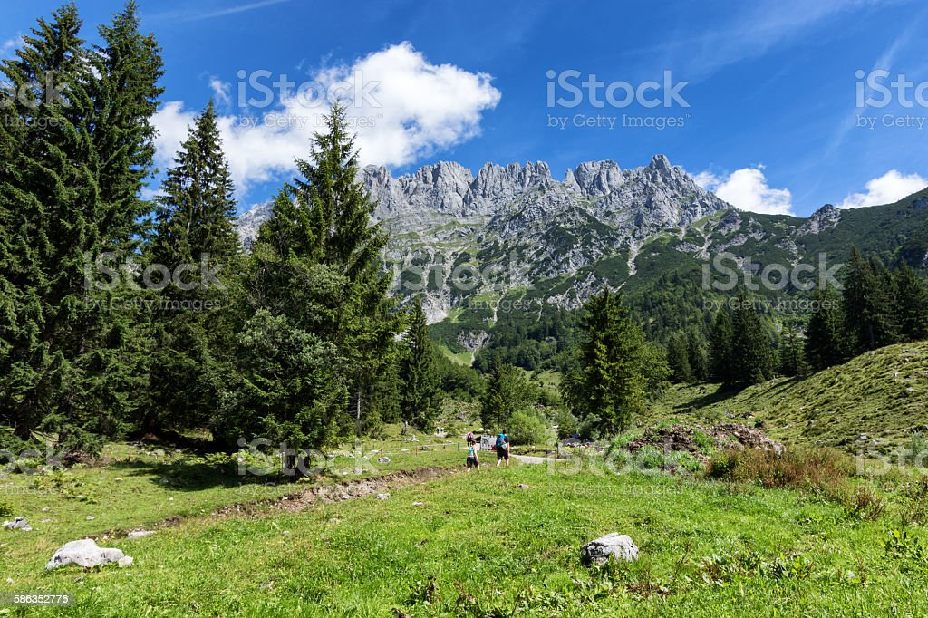 Hiking in the Alps on a sunny day,Tyrol, Austria. stock photo