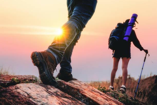 夏の間に森でのハイキング。 - 自然旅行 ストックフォトと画像