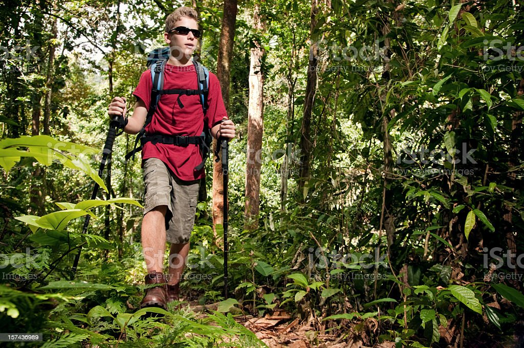 Hiking in the jungle. stock photo