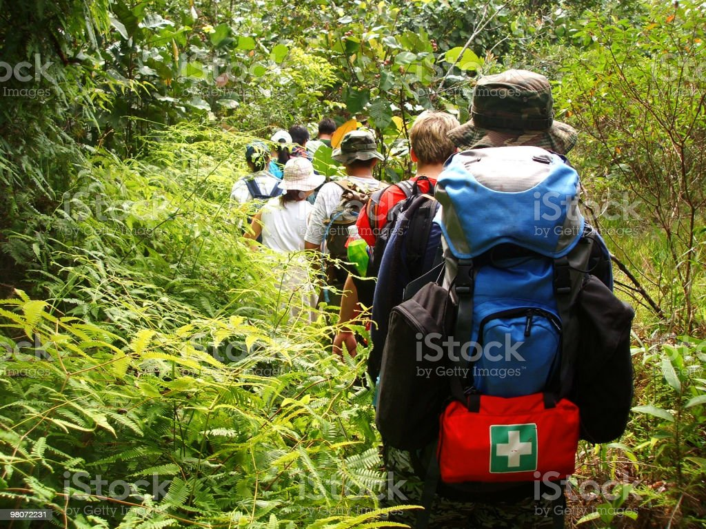 Hiking in the jungle. royalty-free stock photo