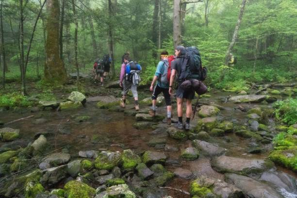 Hiking in the Shenandoah National Park stock photo