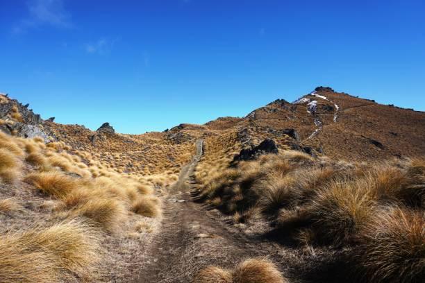 Hiking Isthmus Peak, Wanaka, New Zealand stock photo