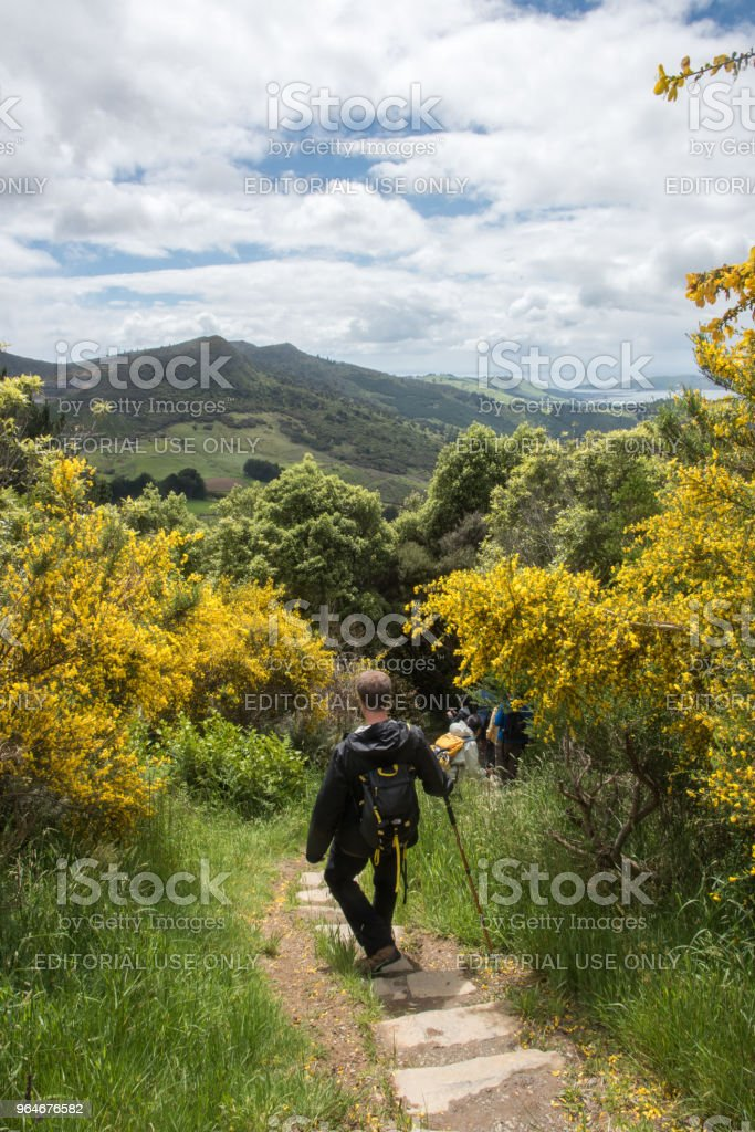 Hiking Mt. Cargill royalty-free stock photo
