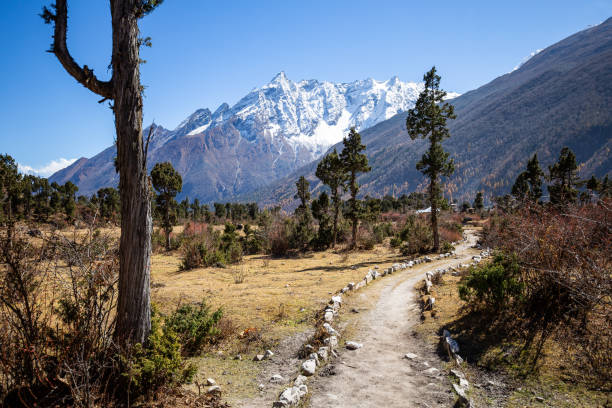 Hiking on the Manaslu circuit near the Birendra Lake stock photo