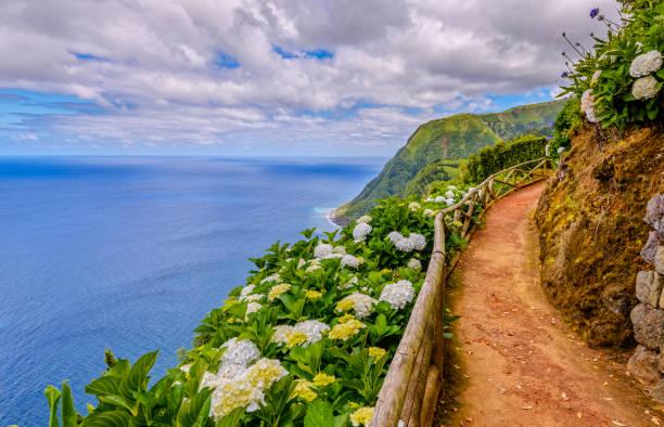 Wanderweg entlang der Hydragenia und dramatische Landschaft in der Nähe von Nordeste, Sao Miguel (Azoren) – Foto