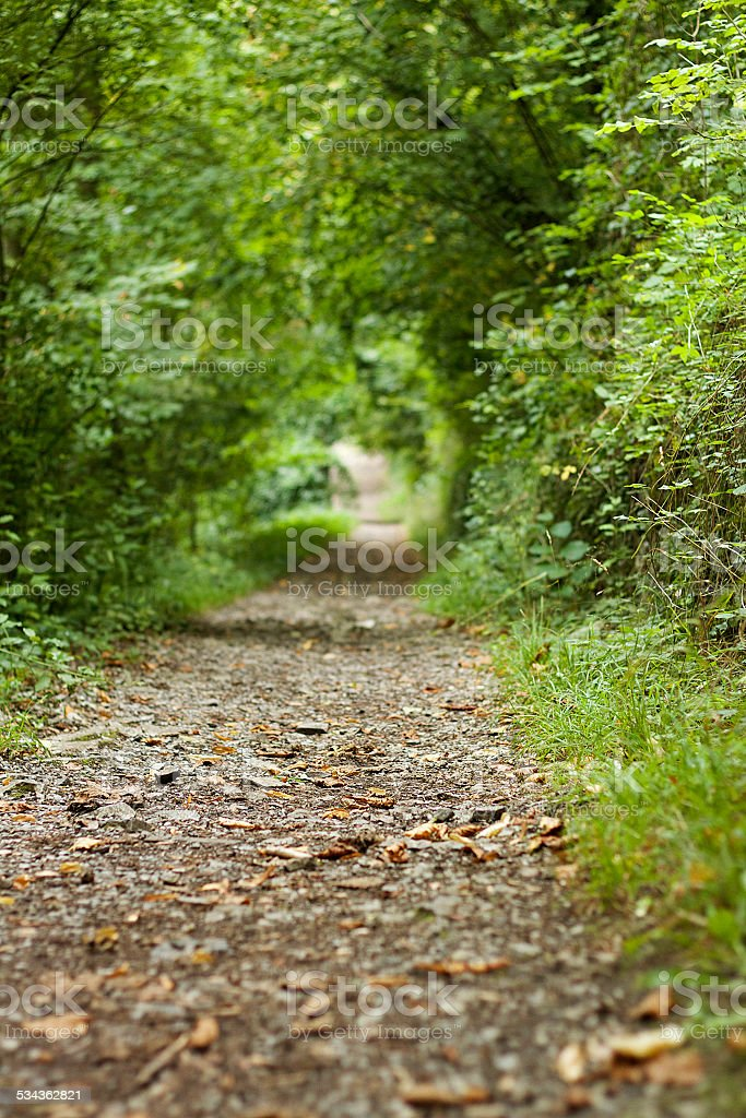 Hiking Path in Dinant stock photo