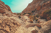 Hiking path in the nature reserve Ein Gedi. Israel. Oasis in the desert