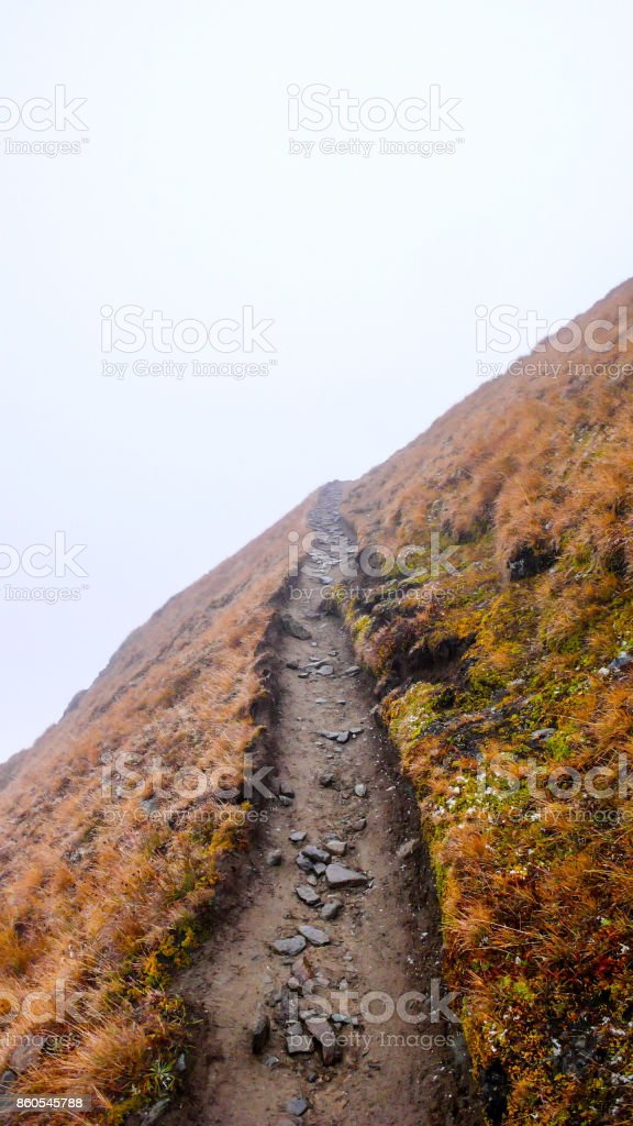 hiking path leading into nothing stock photo