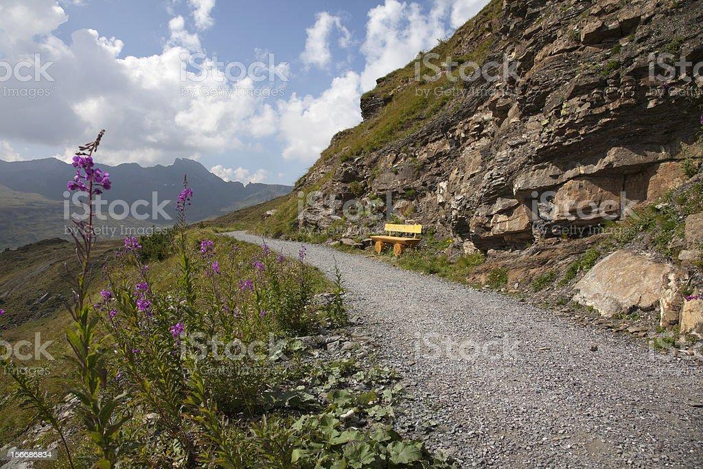Hiking path on mountain in Switzerland royalty-free stock photo