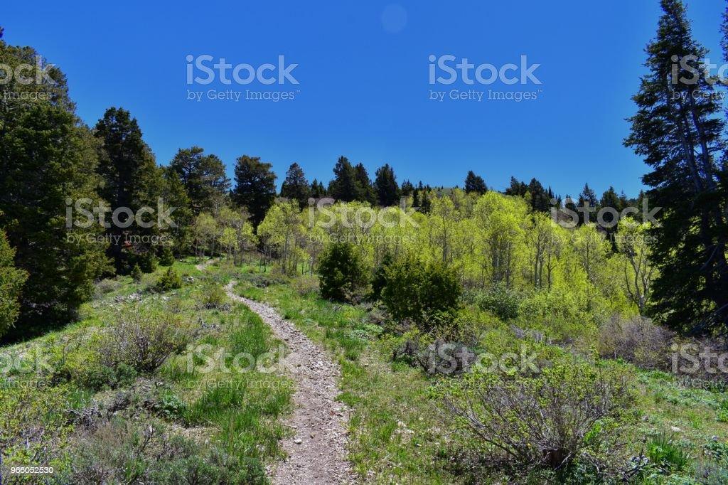 Vandra vägen över Oquirrh bergen längs Wasatch Front klippiga bergen, av Kennecott Rio Tinto koppar gruva, Tooele och Great Salt Lake-dalen under våren. Utah, USA. - Royaltyfri Alpine - Utah Bildbanksbilder