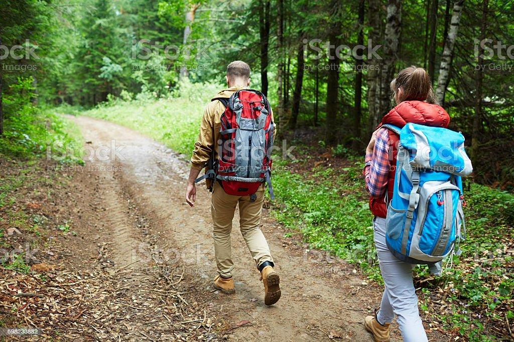 Trilhas para caminhadas  foto royalty-free