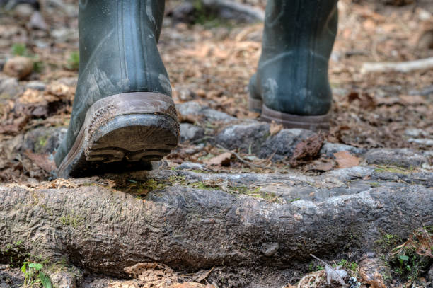 Hiking rubber boots in difficult terrain. stock photo