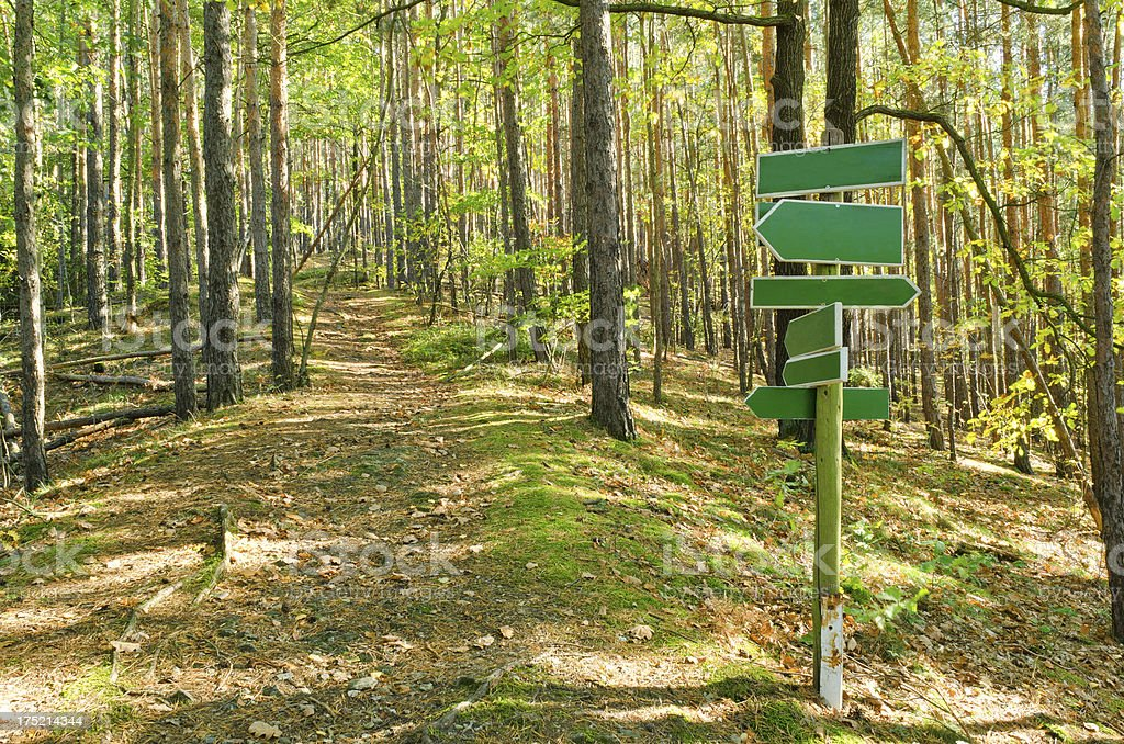 Hiking sign in forest stock photo