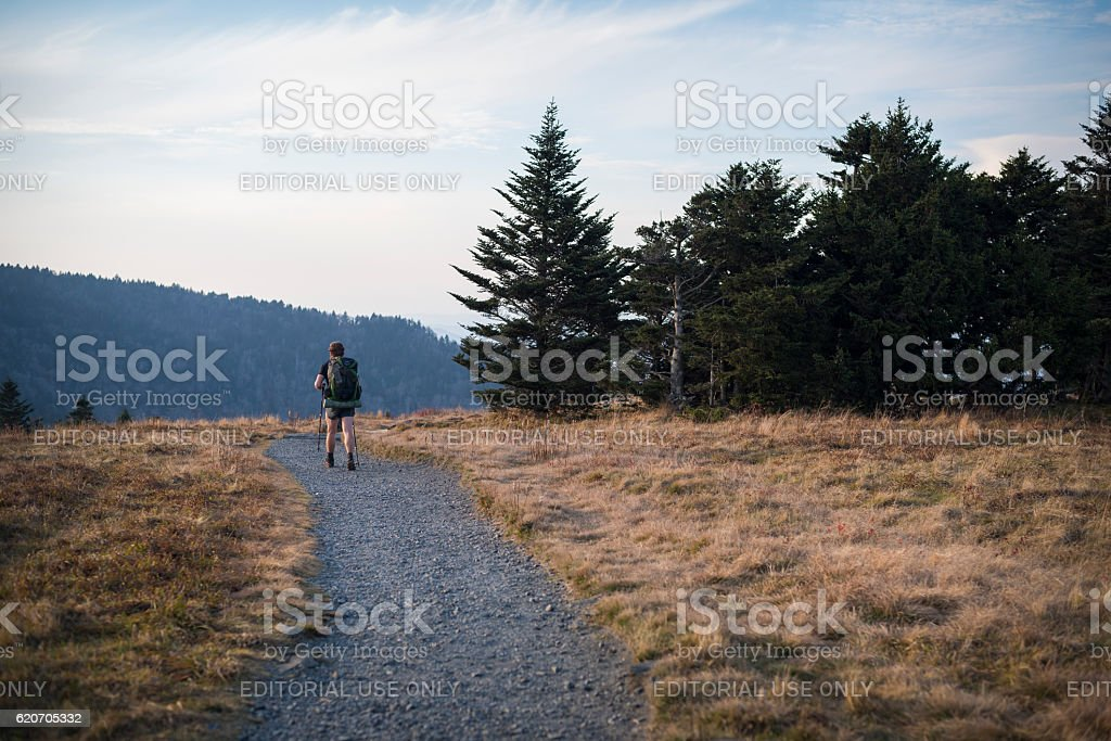 Hiking the Appalachian Trail on Roan Mountain stock photo